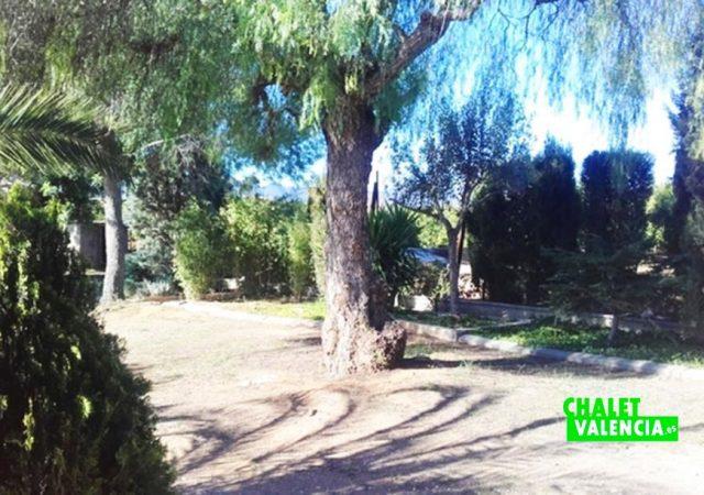 44832-jardin-pinos-chalet-valencia