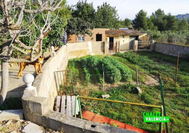 45056-exterior-cultivo-chalet-valencia