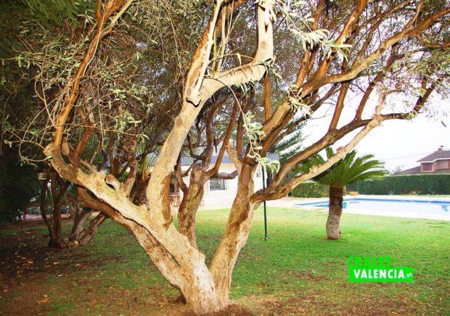 45439-4146-chalet-valencia
