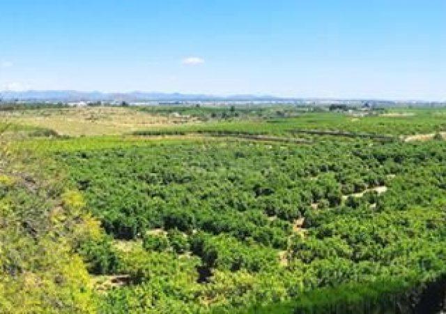 45776-vistas-panoramicas-chalet-valencia