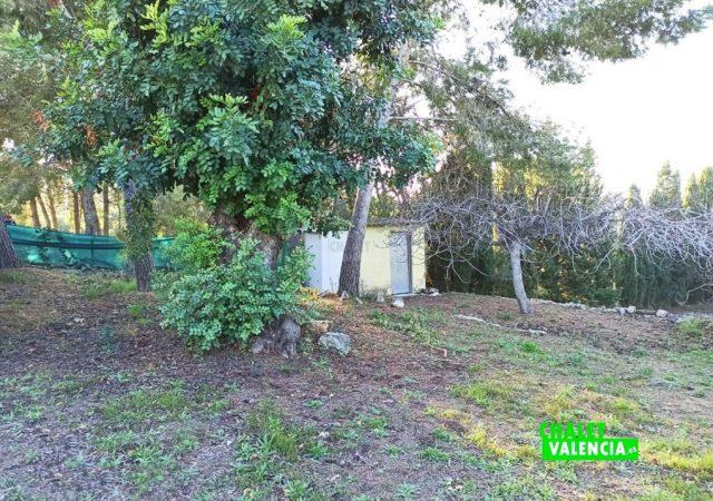 46747-jardin-chalet-valencia