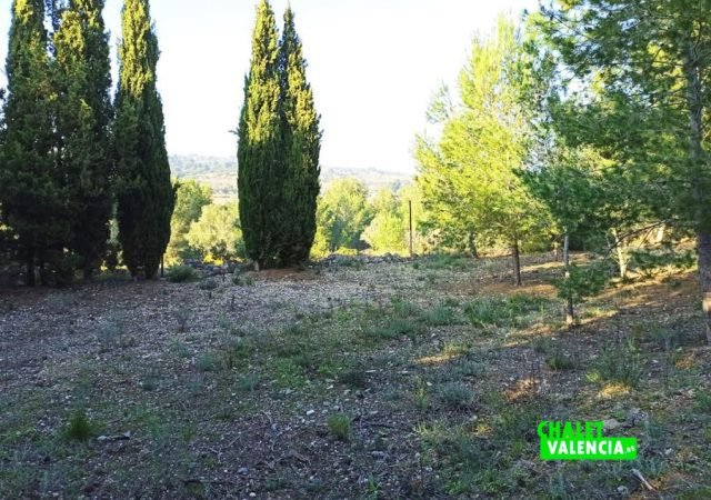 46747-jardin-vistas-chalet-valencia