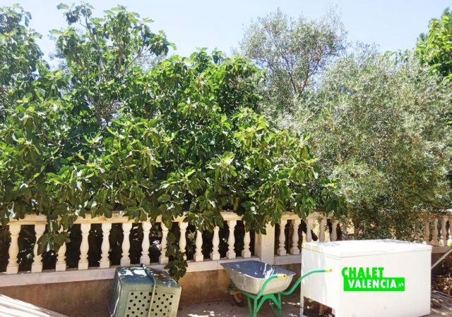 46847-jardin-detalle-cheste-chalet-valencia