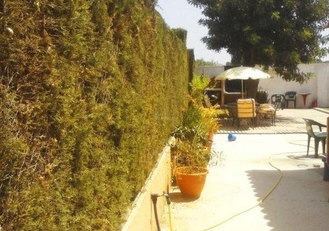 46907-ext-lateral-3-chalet-valencia