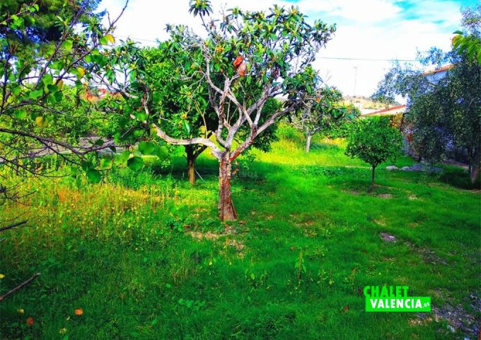 49054-jardin-3-chalet-valencia