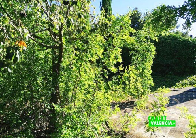 49085-exterior-05-pedralba-chalet-valencia
