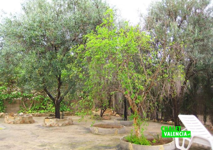 49385-11-chalet-valencia