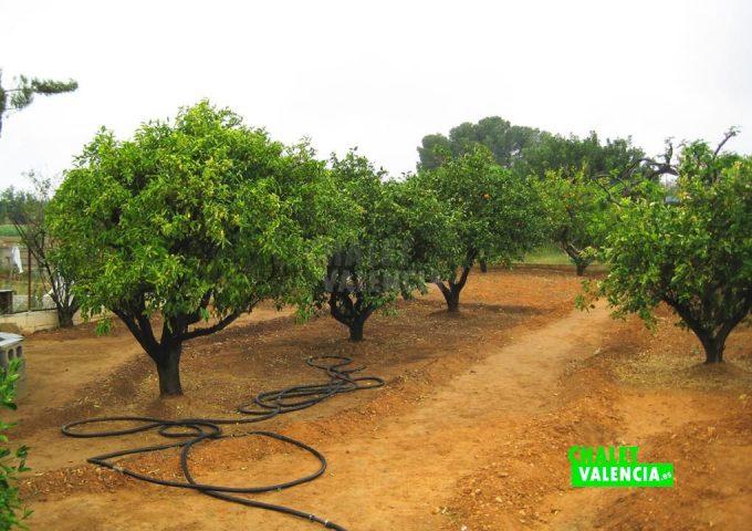 49385-13-chalet-valencia