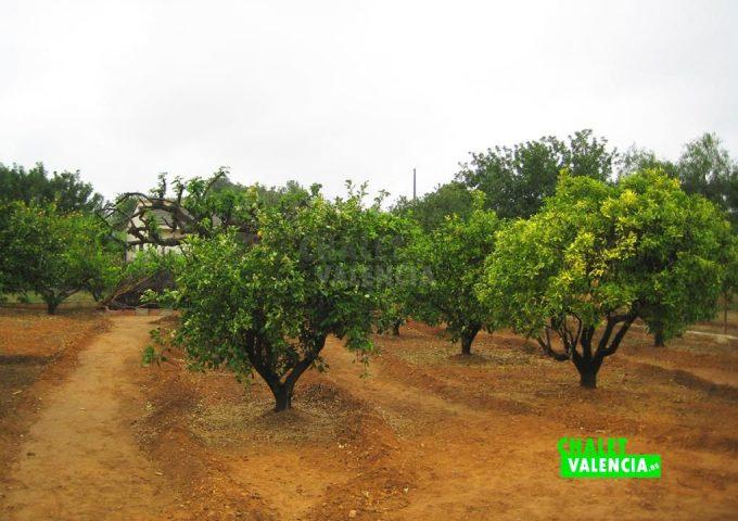 49385-14-chalet-valencia