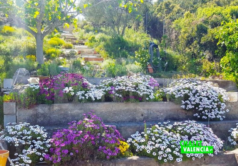 51213-jardin-escaleras-godelleta-chalet-valencia