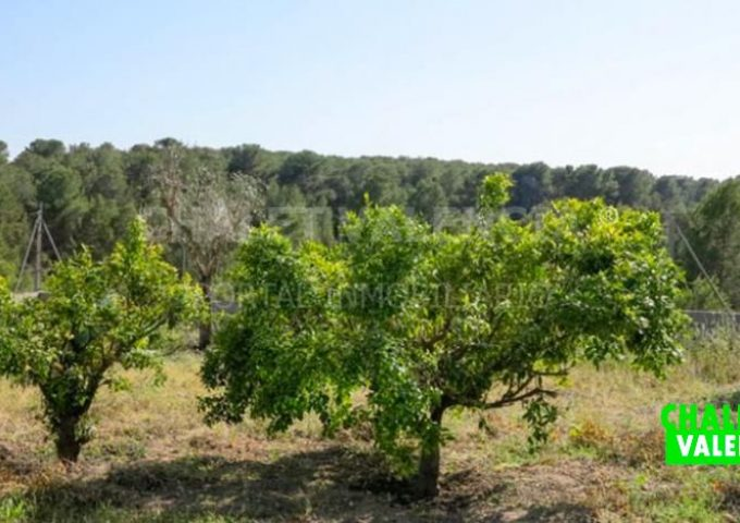 53163-jardin-2-chalet-valencia