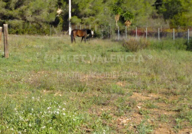 55484-e05-vilamarxant-chalet-valencia