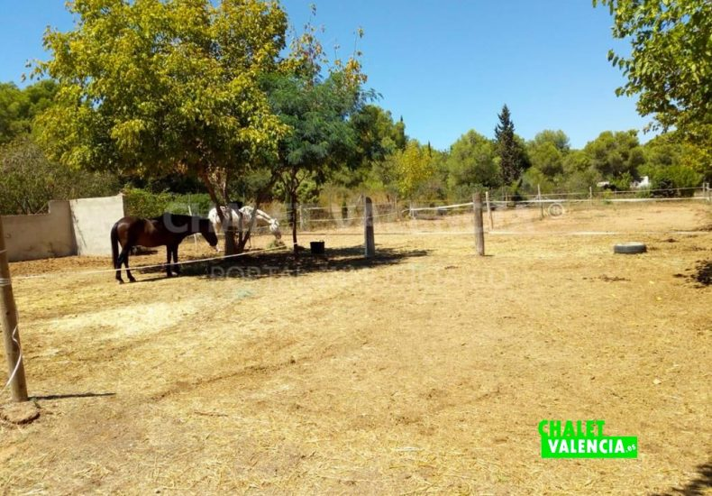 55484-e08-vilamarxant-chalet-valencia